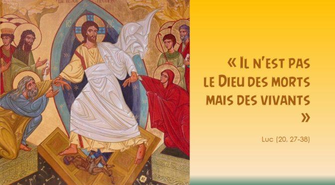 Horaire des messes semaine du 10 novembre