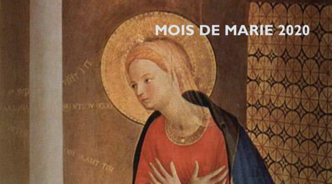 Le pape François invite à prier le chapelet